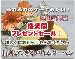 長崎家本店 トーキョーバームクーヘン NO.1スィーツ