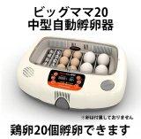ビッグママ20 中型自動孵卵器 デジタル温湿度計付