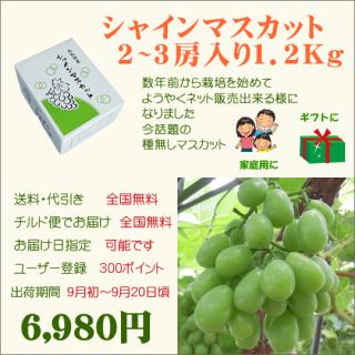 シャインマスカット2房入り(送料・代引き・チルド便・無料)