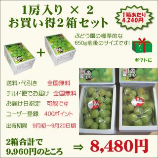 桃太郎ぶどう1房入り お買い得2箱セット(送料・代引き・チルド便・無料)