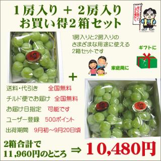 桃太郎ぶどう1房入り+2房入り お買い得2箱セット(送料・代引き・チルド便・無料)