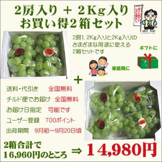 桃太郎ぶどう2房入り+2Kg入り お買い得2箱セット (送料・代引き・チルド便・無料)