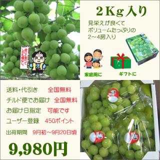 桃太郎ぶどう2Kg入り(送料・代引き・チルド便・無料)