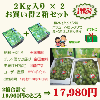 桃太郎ぶどう2Kg入り お買い得2箱セット(送料・代引き・チルド便・無料)
