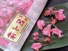 関山桜 《冷蔵》