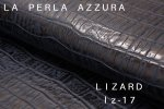 LIZARD Lz-17