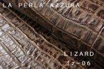 LIZARD Lz-06