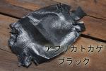 アフリカトカゲ S ブラック