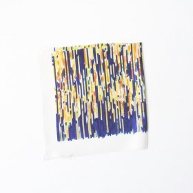 La スカーフ scraps of noise (50×50)