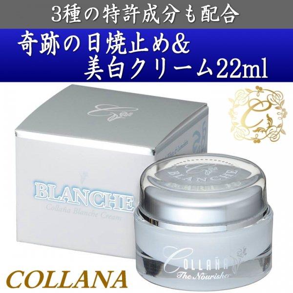 コラーナ ブランシュ クリーム/COLLANA BLANCHE CREAM/特許取得油溶性コラーゲン含有の日焼け止め&美白クリーム 22…