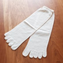 オールシルク5本指靴下(フリーサイズ、生成のみ)