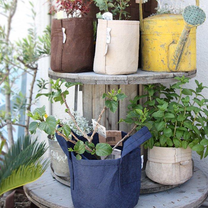 植木鉢として