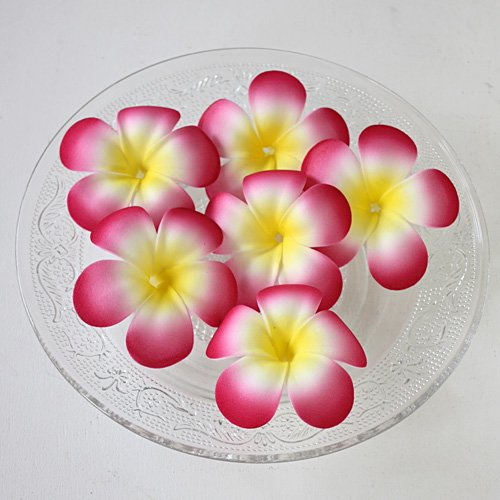 【フローティングフラワー】フランギパニ(プルメリア) ピンク(6個セット)