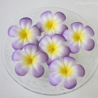 【フローティングフラワー】フランギパニ(プルメリア) パープル(6個)