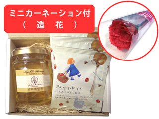 【母の日専用ギフト】ミニカーネーション&国産百花蜂蜜とはちみつりんご紅茶のギフトセット