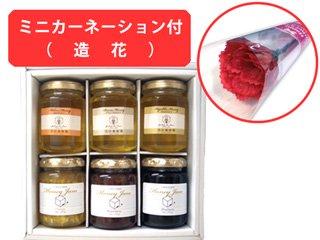 【送料無料】国産はちみつ3個と蜂蜜ジャム3個ギフトセット(ミニカーネーション付)