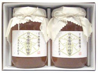 【送料無料】 日本蜜蜂の蜂蜜 ギフトセット(600g×2本入り) [香川県産] 日本みつばちが集めた希少なはち…
