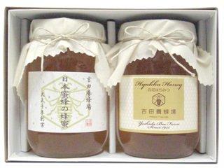 【お歳暮ギフト】【送料無料】 日本蜜蜂の蜂蜜と国産はちみつギフトセット(600g×2本入り)[御年賀・寒中見舞い]
