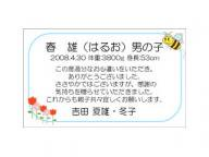 出産内祝いミニメッセージカード[名刺サイズ(ブルー)]