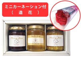 【母の日専用ギフト】ミニカーネーション&国産蜂蜜と蜂蜜ジャムギフトセット