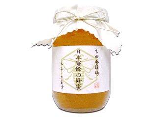 【送料無料】 日本蜜蜂の蜂蜜 600g [香川県産] 日本みつばちが集めた希少なはちみつ