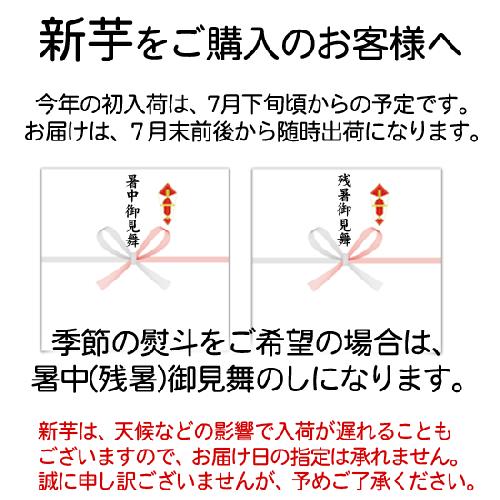 <img class='new_mark_img1' src='https://img.shop-pro.jp/img/new/icons24.gif' style='border:none;display:inline;margin:0px;padding:0px;width:auto;' />芋祭り10%OFF!まとめ買いで最大19%OFF! 送料無料 なると金時 5kg秀箱入 人気のMまたはLサイズが選べます(徳島県産鳴門金時)詳細画像