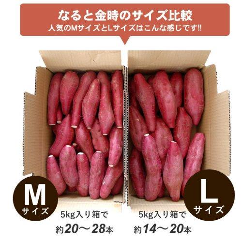 送料無料 なると金時 5kg秀品箱入 人気のMまたはLサイズが選べます(徳島県産鳴門金時)詳細画像