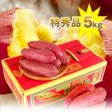 芋祭り10%OFF!送料無料 最上級ランク!なると金時里むすめ5kg 特秀  人気のMまたはLサイズが選べます(徳島県里浦産)
