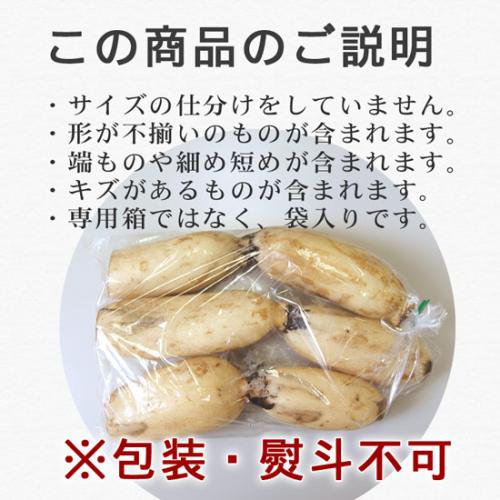 【激安】徳島県産高級レンコン1kg袋詰め!訳ありで半額♪同梱OK!【11月下旬〜1月下旬頃の冬季限定販売】詳細画像