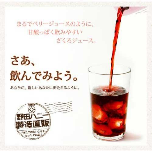ざくろジュース果汁100% 濃縮還元 1000mlパック ※シュリンクなし(1ケース12本以上買うと送料無料!)詳細画像