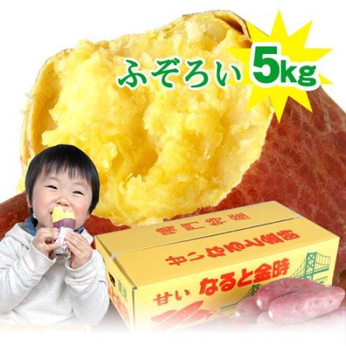 【送料無料】ふぞろいのなると金時5kg(徳島県産鳴門金時さつまいも)