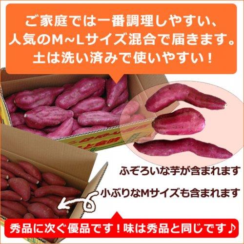 【送料無料】ふぞろいのなると金時5kg(徳島県産鳴門金時さつまいも)詳細画像