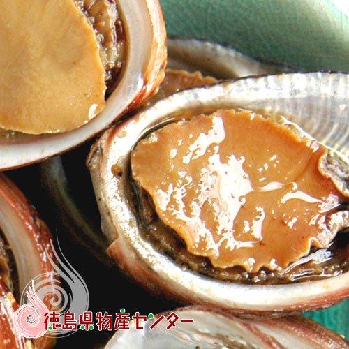 貝付「流子」味付缶詰(とこぶし)ギフト/贈答品/お中元/お歳暮/詳細画像