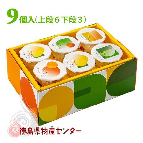 ジュレ徳島9個入(徳島洋菓子クラブ イルローザ)夏季限定商品