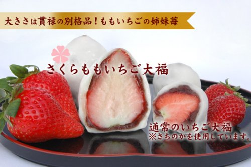 さくらももいちご大福6入(季節限定 徳島佐那河内村の特産高級桃苺)詳細画像