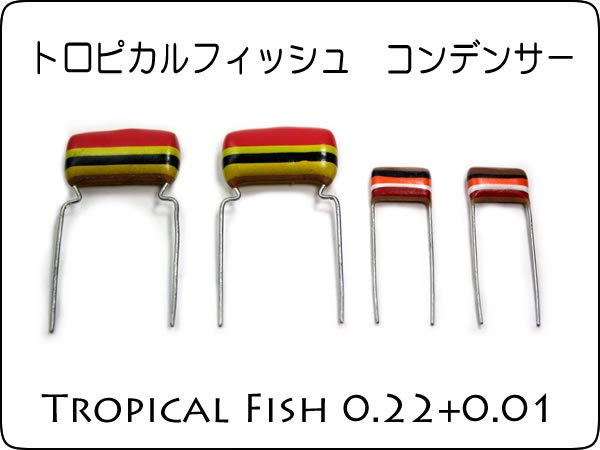 <img class='new_mark_img1' src='https://img.shop-pro.jp/img/new/icons20.gif' style='border:none;display:inline;margin:0px;padding:0px;width:auto;' />★Philips Mullard Tropical Fish Capacitors 0.22uF + 0.01uF
