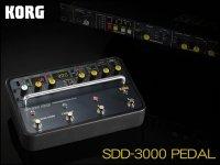 KORG コルグ SDD-3000 PEDAL デジタルディレイ