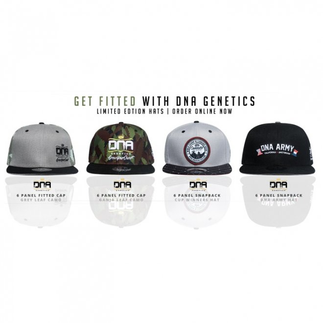 smoker universe dna genetics 6 panel fitted hat gray leaf camo 通販