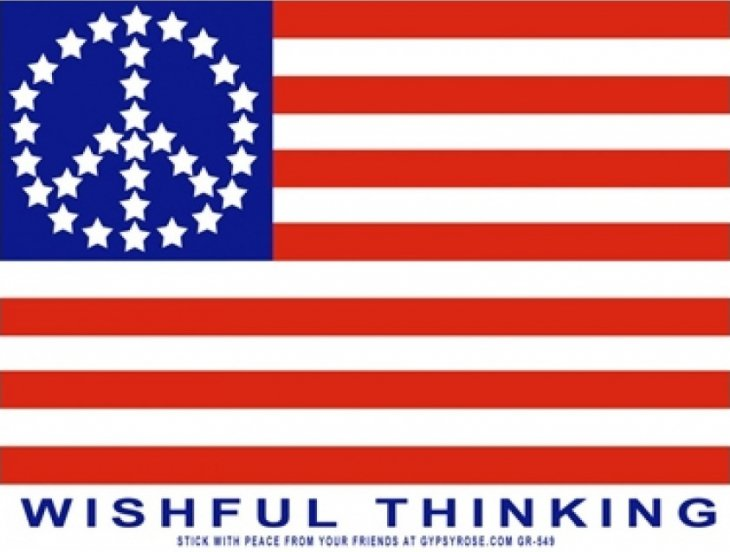 WISHFUL THINKING ステッカーColor:ONE    Size:縦9.5cm×横12.5cm- USA STICKER -