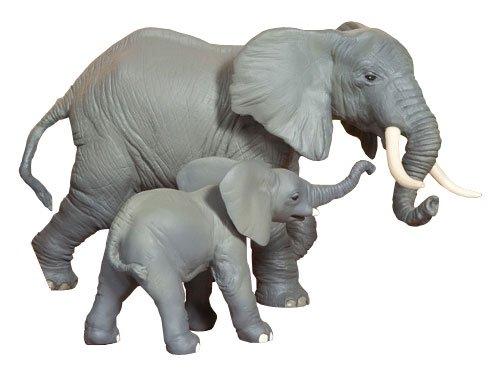 [PAPO パポ社] ゾウの子ども