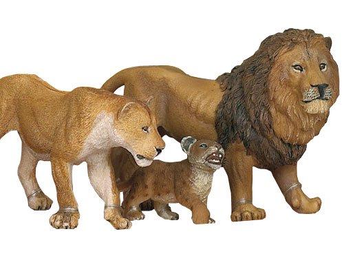 [PAPO パポ社] ライオンの子ども