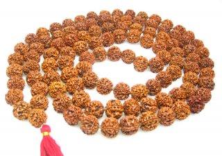 4面ルドラークシャ・マーラー(ネパール産、108+1ビーズ)