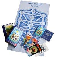 【人類における最古の知恵】カバラ・カード