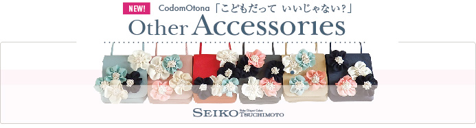 Ohter Accessories