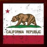 【アートフレーム】サインフレーム カリフォルニア共和国【ゆうパケット】