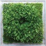 【グリーンフレーム】芝生リース3