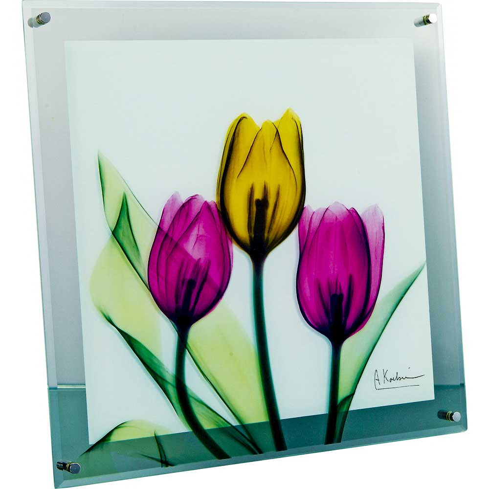 【レントゲンアート】X RAY ガラス アート「チューリップ(Lサイズ)」