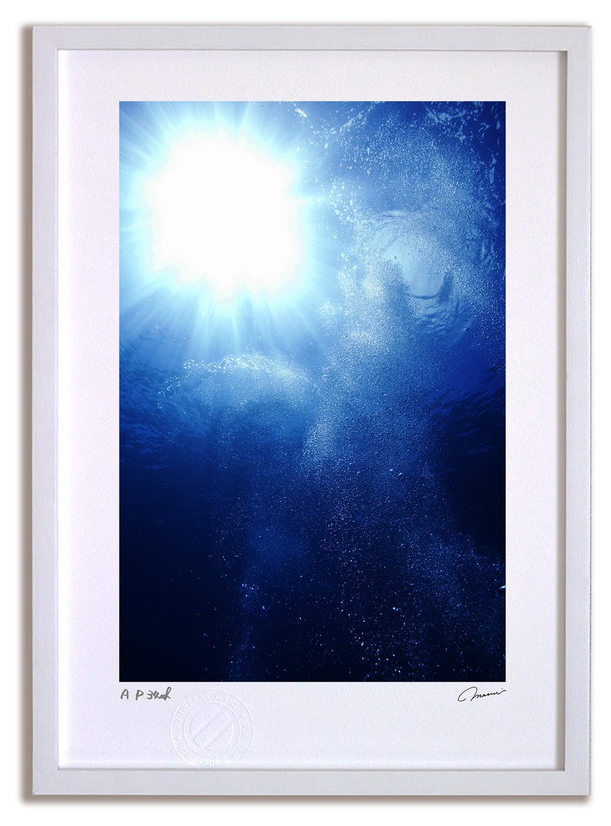 《アートフォト》パラオ 海中日光浴(レンタル対象)