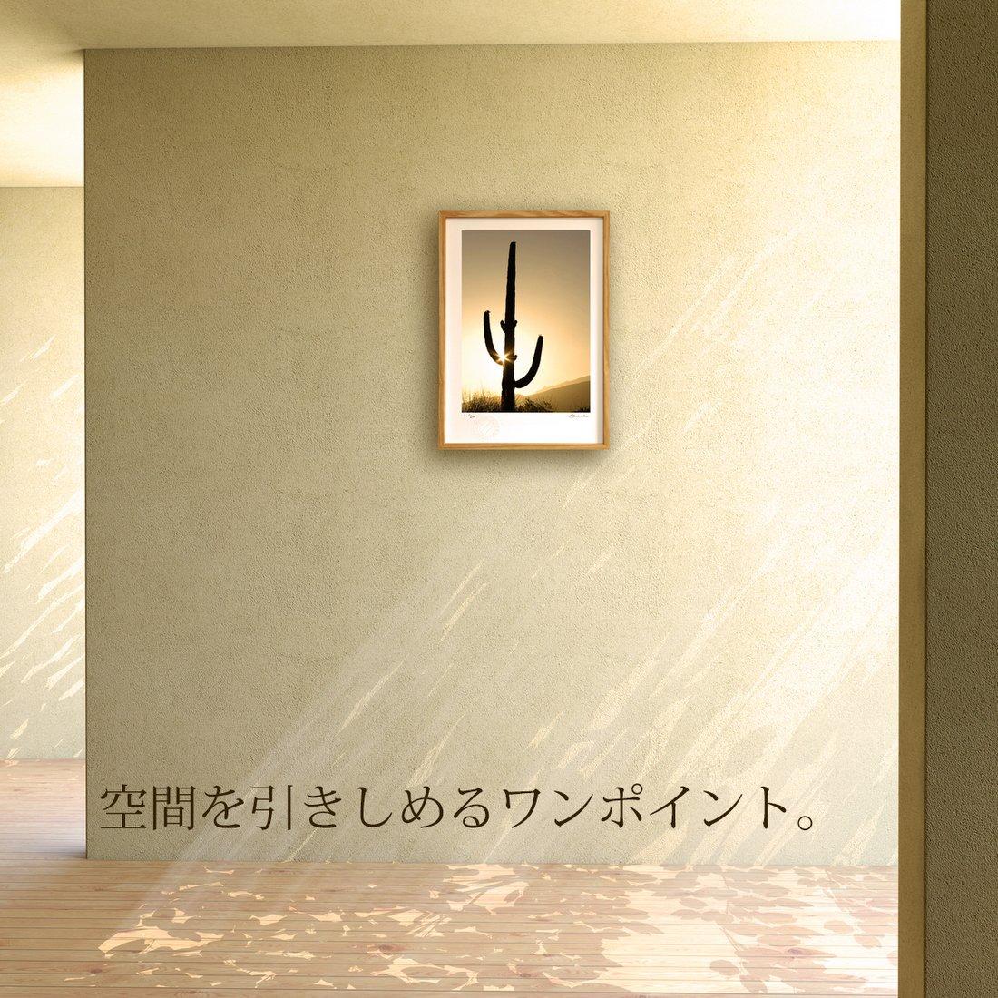 【版画 絵画】朝日に光るサワロサボテン(スミコ スコット)/インテリア 壁掛け 額入り アート アートパネル アートフレーム