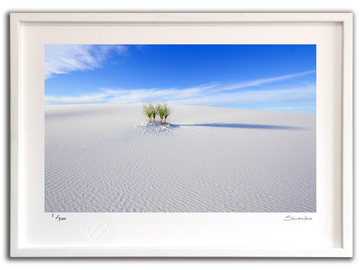 【版画 絵画】白い砂漠、ホワイトサンズ国定公園(スミコ スコット)/インテリア 壁掛け 額入り アート アートパネル アートフレ…
